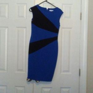 Calvin dress